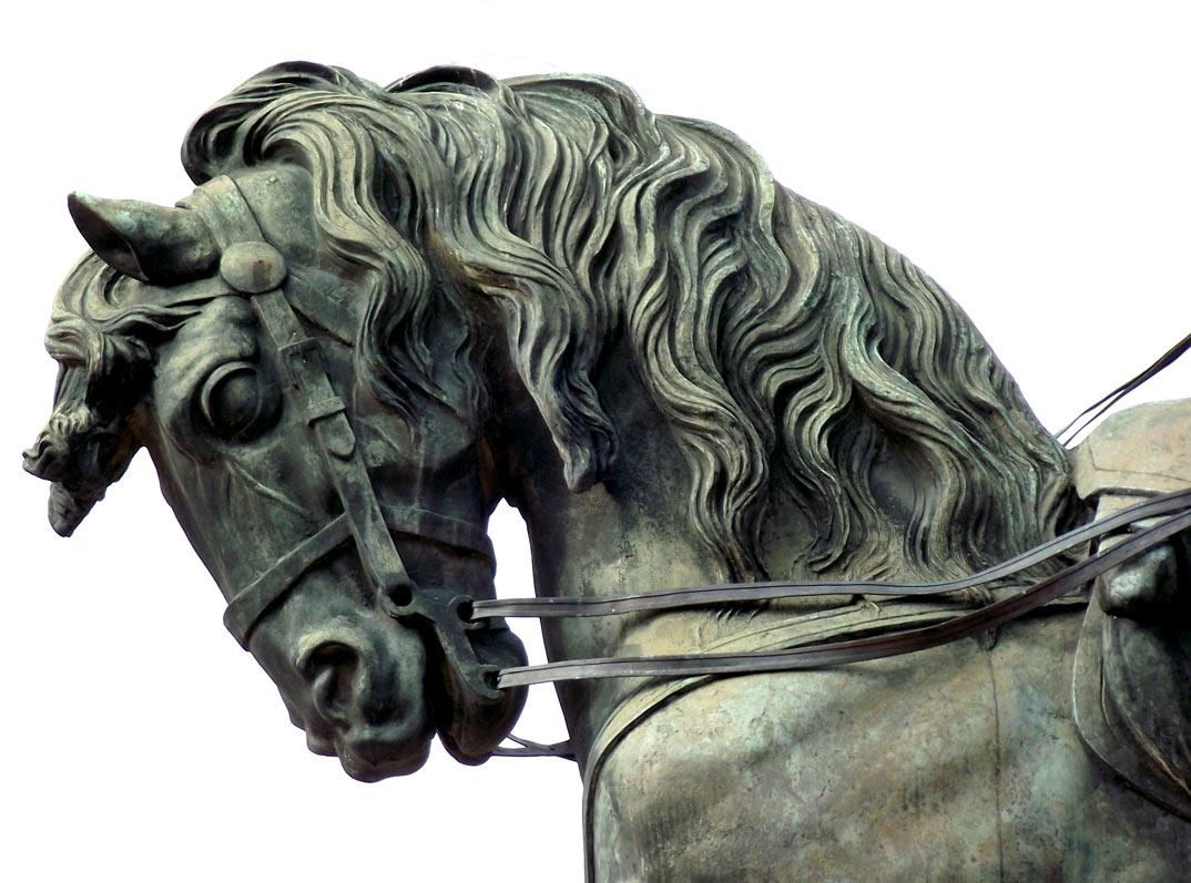 Foto gratis - Escultura de la cabeza de un caballo