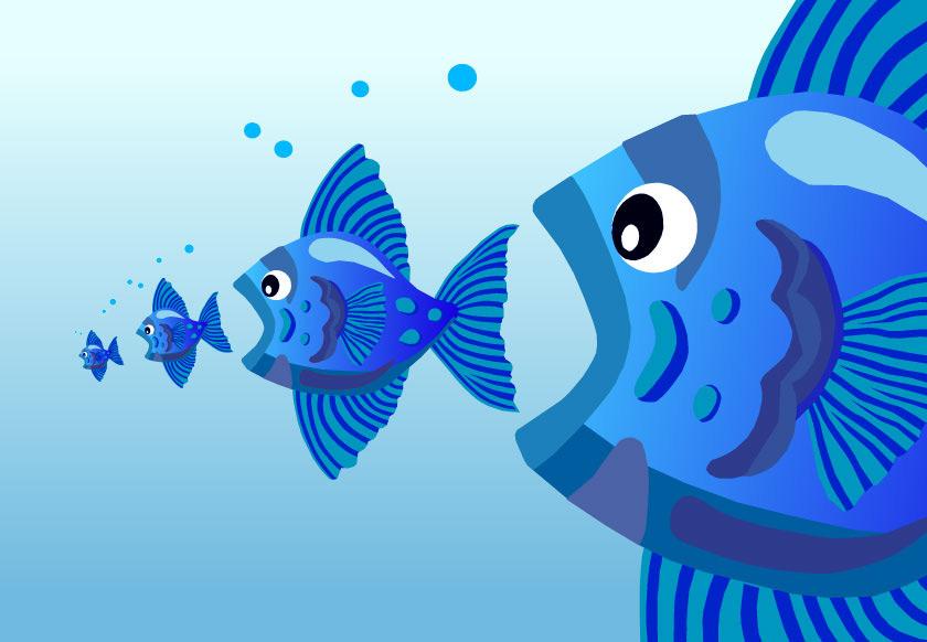 pez come pez