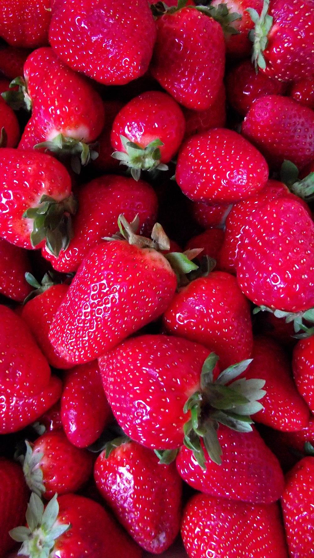 Fotografía de unas rojas fresas