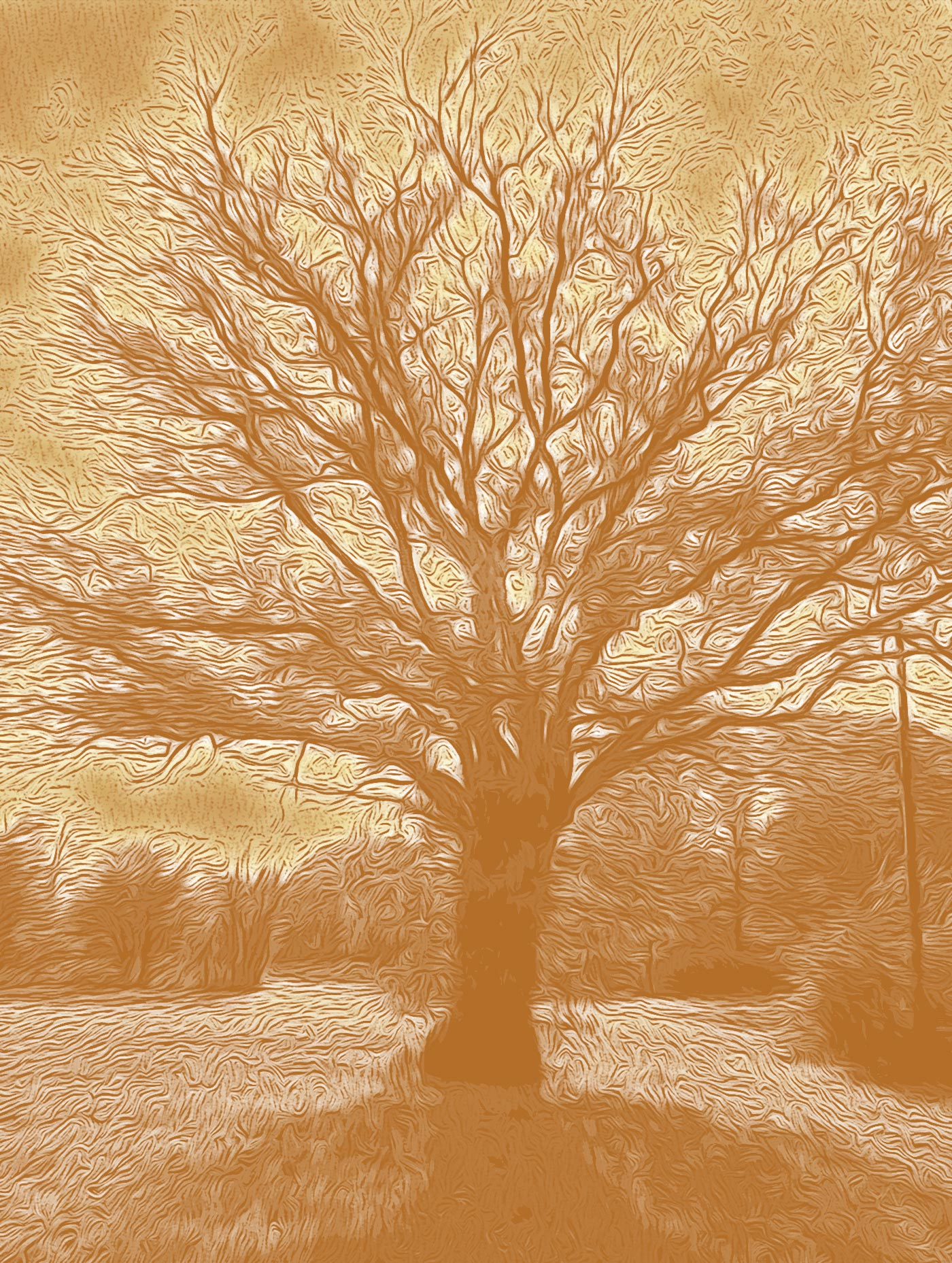 Ilustración gratis - El árbol francés