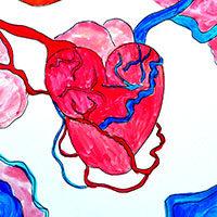 Anatomía de un corazón en el cuerpo
