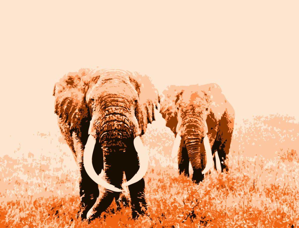 Ilustración de dos elefantes en África versión colores naranjas