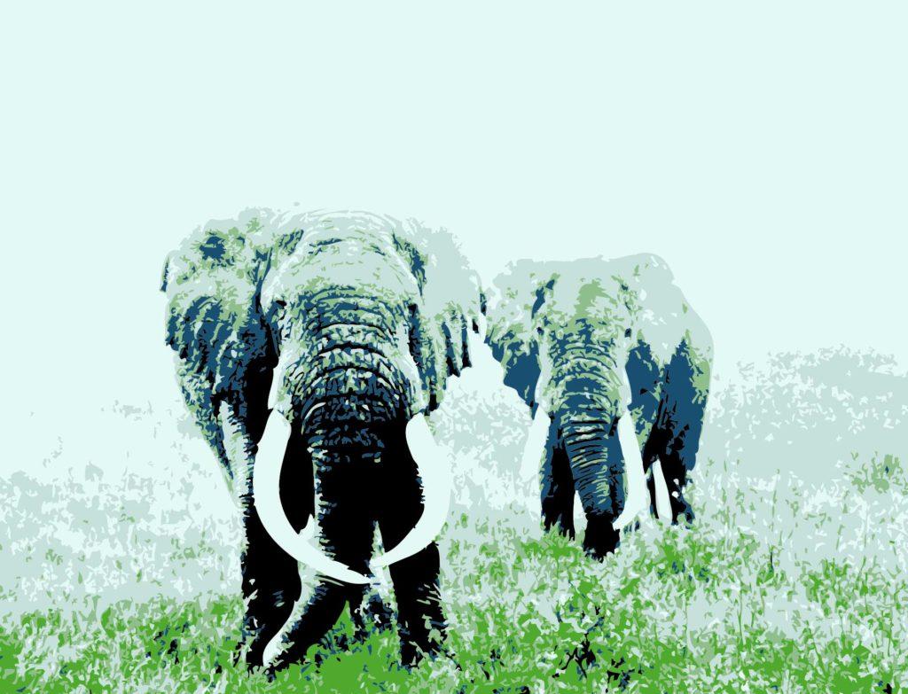 Elefantes africanos pintura digital