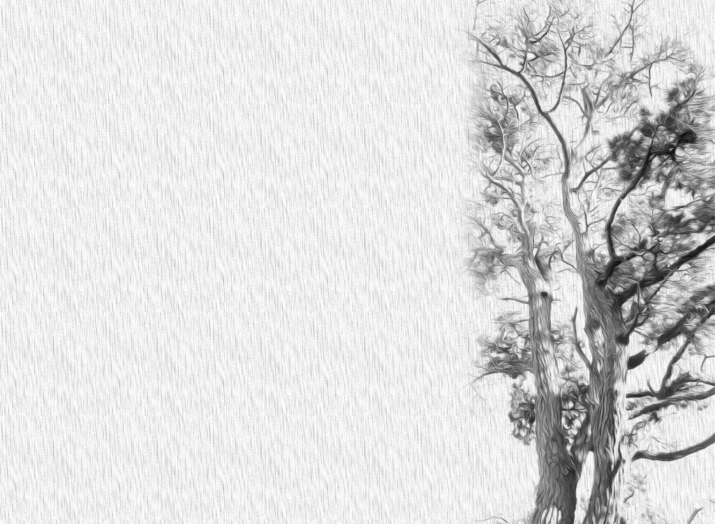 pintura digital arbol gris