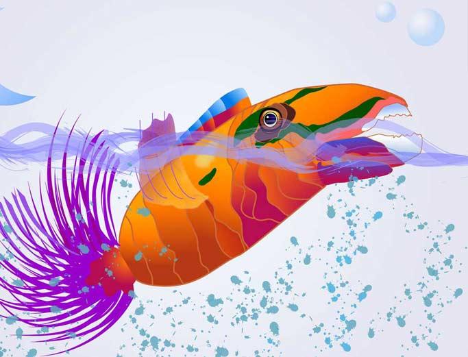 El pez de colores dibujo